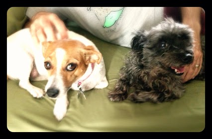 Lychee and Kiwi