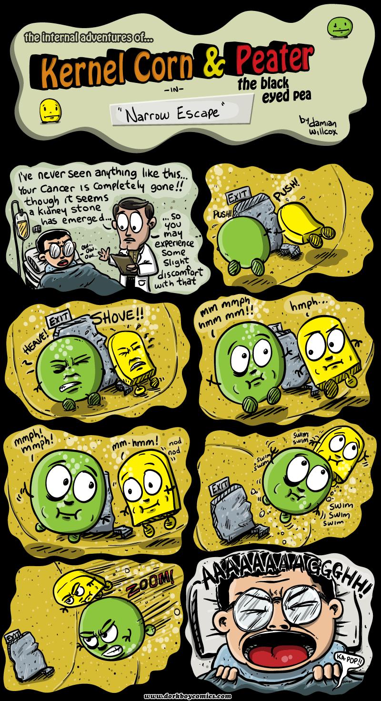 Kernel Corn – narrow escape