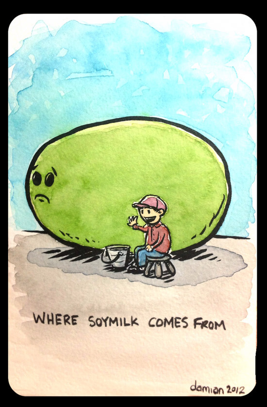 Where soymilk comes from